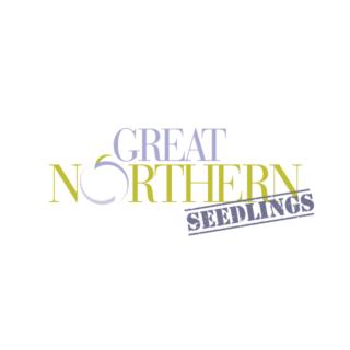 Great Northern Seedlings